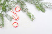 Christmas tree decoration with place for your text invitation — Fotografia Stock