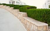 Landscape design. Nicely trimmed bushes at the front yard. Empty — Stock Photo
