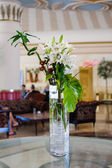 White lily flowers in a vase — Fotografia Stock
