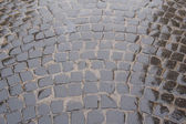 Fragment of stone-paved road — Stock Photo