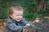 Little boy in a park near the old stump in autumn — Stock Photo