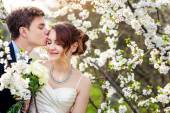 Groom kisses the bride on a background of blooming trees — Photo