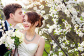 Groom kisses the bride on a background of blooming trees — 图库照片