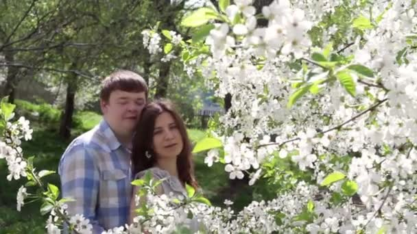 Loving couple walking in a park near a blossoming tree in the spring — Vidéo