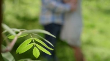 Happy loving couple standing near birch in spring — Stock Video