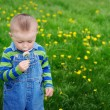 Beautiful cute boy in the park blowing on dandelion spring time — Stock Photo #72498267
