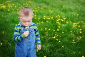 Beautiful cute boy in the park blowing on dandelion spring time — 图库照片