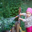 Little girl in pink boots watering the flowers — Stock Photo #79157386