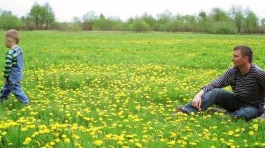 Kleine jongen plukken bloemen — Stockvideo