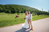 Happy beautiful bride and groom walking on field in sunlight — Stock Photo