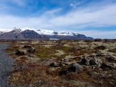 Skaftafell National Park — Stock Photo