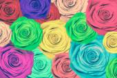 Colorful roses background — 图库照片
