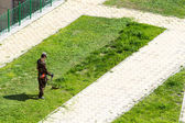 Man cuts the grass trimmer — Stock Photo