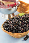 Black currants in bowl — Stock Photo