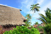 Beach Bungalows in Aitutaki Cook Islands — Stock Photo