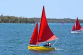 Sailing in Gold Coast Queensland Australia — Stock Photo