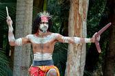 Portrait of one Yugambeh Aboriginal warrior man — Stock Photo