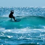 Surfer in Surfers Paradise Gold Coast Australia — Stock Photo #59564713