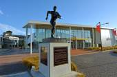 Palmerston North - New Zealand Rugby Museum — Stock Photo