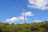 Te Apiti Wind Farm in Palmerston North — Stock Photo