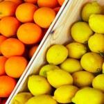 Citrus of Oranges and lemons — Stock Photo #73628973