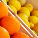Oranges and lemons close up — Stock Photo #73629177