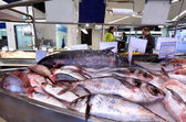 Shoppers in Auckland Fish Market, Auckland New Zealand — Stock Photo