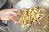 Ready to serve stir fried bean sprout — Stock Photo