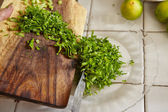 Chopping parsley for cooking ingredient — Stock Photo