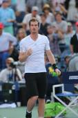 Grand Slam Champion Andy Murray celebrates victory after fourth round match at US Open 2014 — Foto Stock