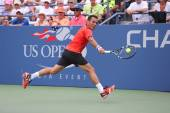 Professional tennis player Victor Estrella Burgos during third round match against Miols Raonic at US Open 2014 — Foto de Stock