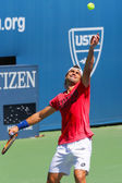 Professional tennis player David Ferrer practices for US Open 2014 — Foto Stock