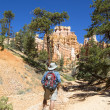 Hiker at Queens Garden trial at Bryce Canyon National Park in Utah — Stock Photo #57786463