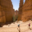 Hikers at Queens Garden trial at Bryce Canyon National Park in Utah — Stock Photo #57884067