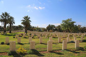 Beer Sheba War Cemetery — Stock Photo