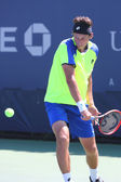 Professional tennis player Sergiy Stakhovsky from Ukraine during first round match at US Open 2014 — Stock Photo