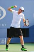 Grand Slam Champion Andy Murray during US Open 2014 round 4 match against Jo-Wilfried Tsonga — Stock Photo