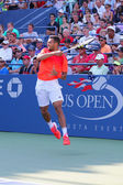 Professional tennis player Jo-Wilfried Tsonga during US Open 2014 first round match — Stock Photo