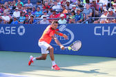 Joueuse de tennis Jo-Wilfried Tsonga lors nous 2014 Open 1er tour match — Photo