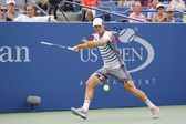 Professional tennis player Tomas Berdych from Czech Republic during US Open 2014 round 3 match — Stock Photo