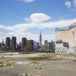 Постер, плакат: Graffiti at abandoned building in Greenpoint Brooklyn