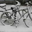 Bicycles under snow during massive Winter Storm Thor — Stock Photo #66861463