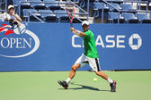 Two times Grand Slam Champion Lleyton Hewitt of Australia practices for US Open 2015 — Stock Photo