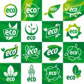 Large set of vector logos eco — Stock Vector