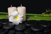Spa concept of zen basalt stones, white flower frangipani, candl — Stock Photo