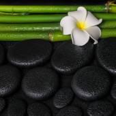 Spa setting of zen basalt stones, white flower frangipani and na — Stock Photo