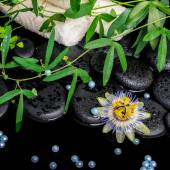 Spa concept of passiflora flower, green  branches, towels, zen b — Zdjęcie stockowe