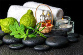 Aromatic spa still life of bottles essential oil, fresh mint, ro — Stock Photo