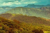 Beautiful landscape with mountains in India, kerala, Munnar, vin — Stock Photo