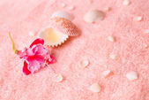 Spa tender concept with pink flower fuchsia, seashells on delica — Stock Photo